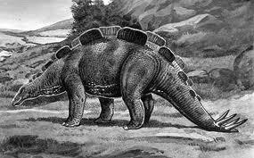 File:Wuerhosaurus2.jpg