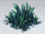 File:Green Seaweed.png