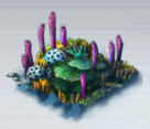File:Small Coral Patch.png