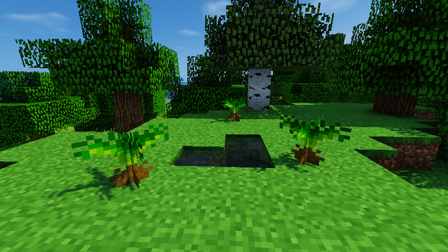 File:JC screenshot - Small Cycad.png