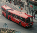Some buses