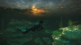 Under water in Panau