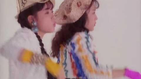 Wink - Sabishii Nettaigyo (1989) - 淋しい熱帯魚 - High Quality