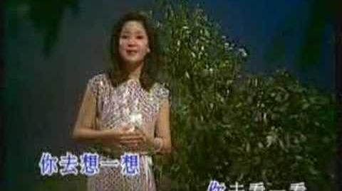 The Moon Represents My Heart - Teresa Teng