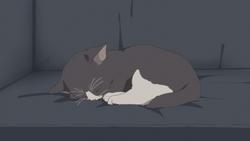 Azu-nyan 2 sleeping