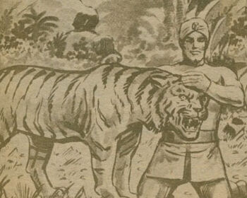 Tigre MI Extra
