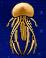 File:JellyfishYummy.png