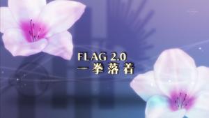 Flag 14.0