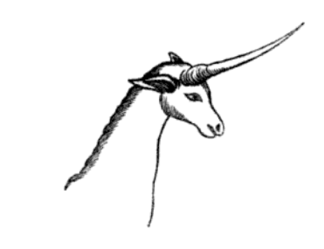 John Barrow unicorn drawing
