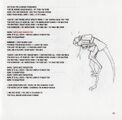 Velociraptor - 3
