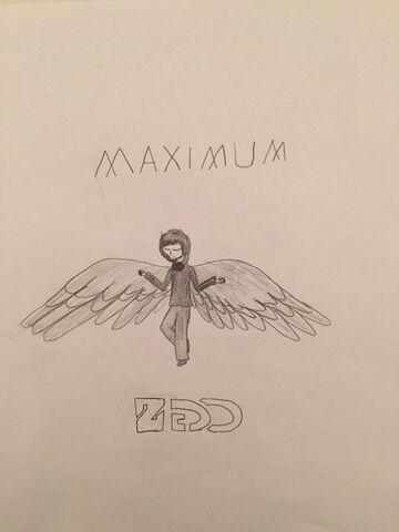 File:Maximum Zedd.jpg