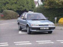 Rover-216-Keeping-Up-Appearances