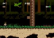 NewSwamp