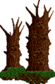 Woods Theme.png