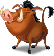 Pumbaa 3