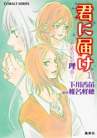 Kimi ni Todoke Light Novel v11 cover