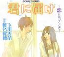 Kimi ni Todoke Light Novel Volume 02