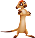 Timon.png
