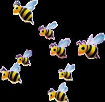Honey Bee KHII