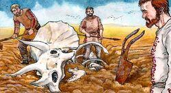TriceratopsSkull
