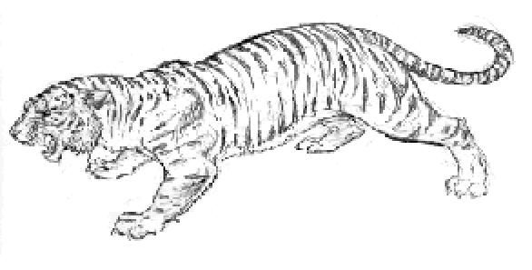 File:TigerconceptartKQ5.jpg