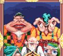 Sense Gnomes