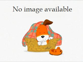 File:Kipper no image.png