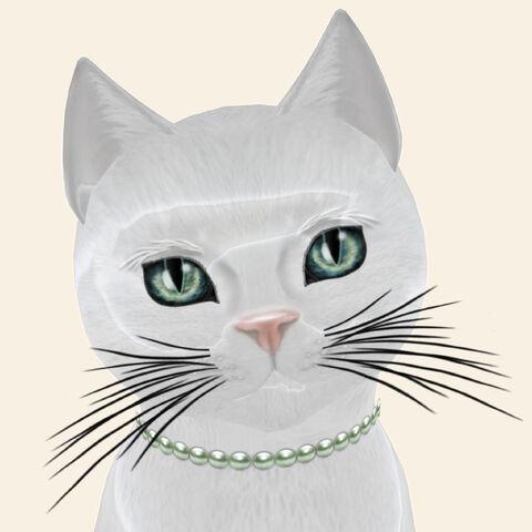 File:KittyCatS! - Amore.jpg