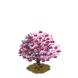 File:Cherry last.png