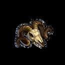Bone horned skull