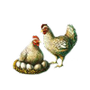 File:Chicken.png