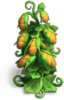 Res breadfruit tree 3