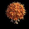 Res bush orange