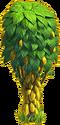 Cocoa tree ph4