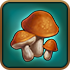 Adv-Mushrooms.png