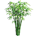 Res bamboo 1.png