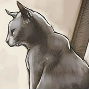 Catfuneral