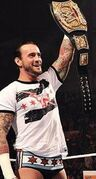 1870017-cm punk wwe champion box art