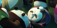 Grandma Panda