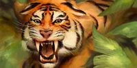 Tiger/Meta