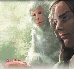 File:Monkey 2.jpg