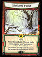 Blanketed Forest-card.jpg
