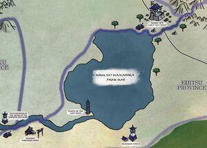 Chrysanthemum Petal Lake