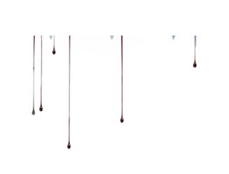 Archivo:Sangre de perfil.png