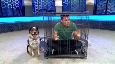 """Lab Rats Bionic Island - """"Bionic Dog"""" Preview"""