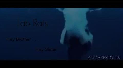 Lab Rats Hey Brother . . . Hey Sister