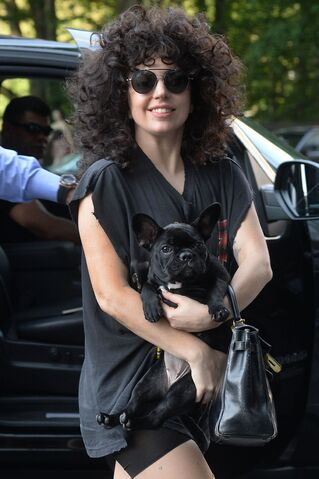 File:6-22-14 Arriving at her apartment in NYC 002.jpg