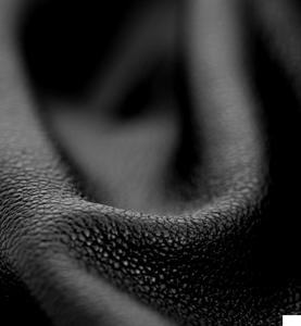 File:Eau de Gaga - Instinct Leather.png