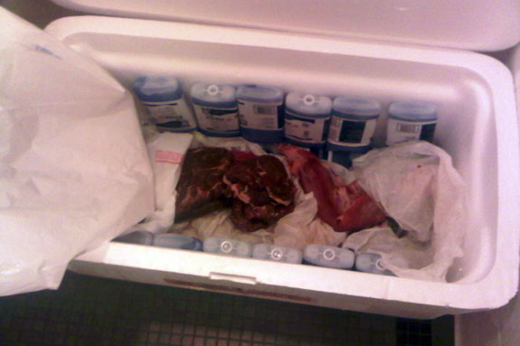 File:Meat Dress (Backstage 2).jpg