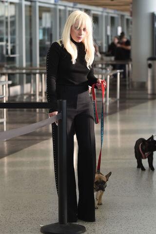 File:10-20-15 At JFK Airport in NYC 001.jpg